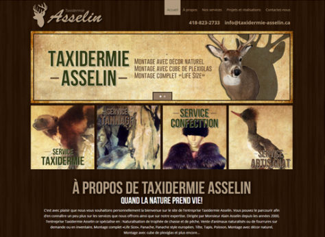 TaxiDermie-Asselin-feat