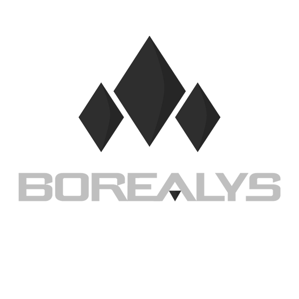 Logo de Borealys