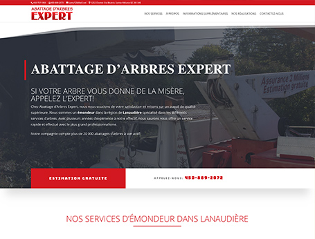 Abattage d'Arbres Experts